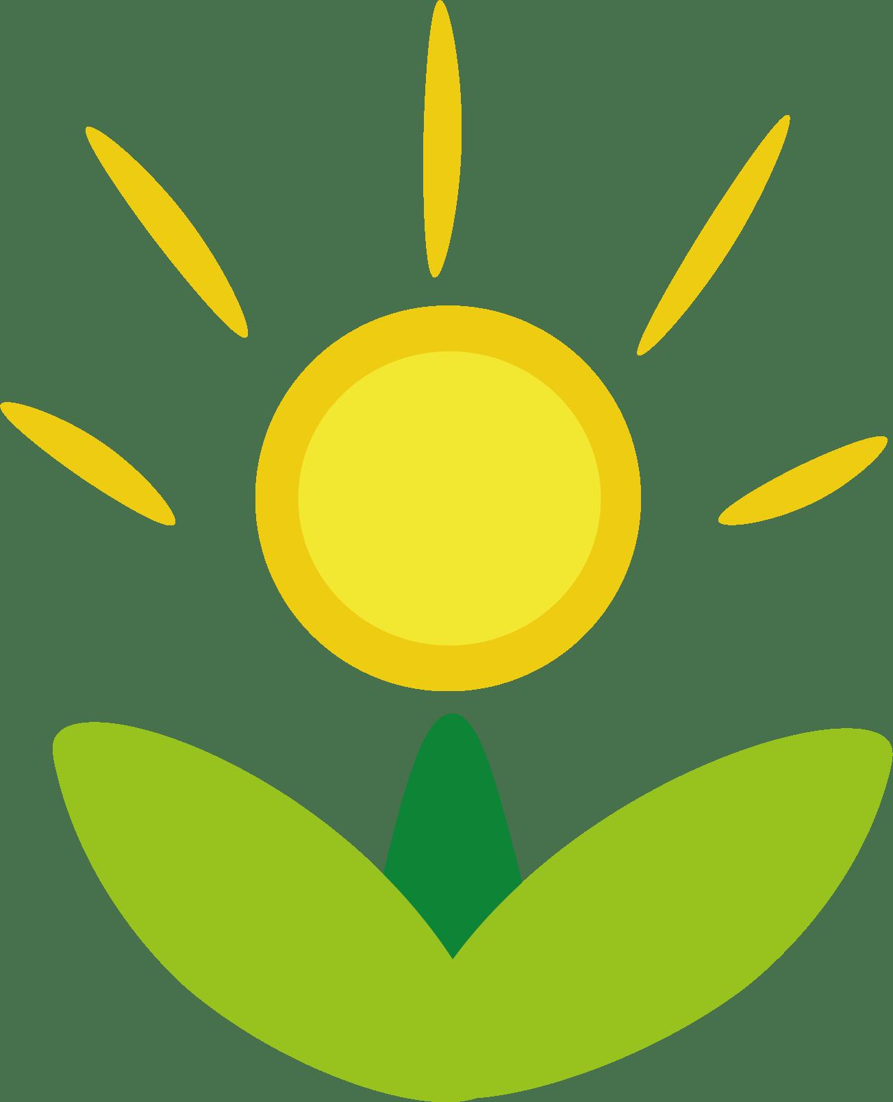 Kreative Kommunikation Agency Landing Page Raidboxes Klimapositiv